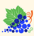 grapes with leaf flat style vector image