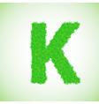 grass letter K vector image