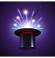 Magic Hat Background vector image