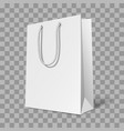mockup bag vector image