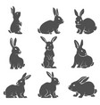 set rabbit icons isolated on white background vector image