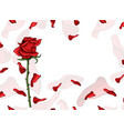 valentine day love postcard single red rose flower vector image