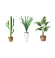 watercolor set with home plants in ceramic vector image vector image