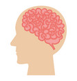 brain storming with human profile vector image vector image