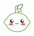 kawaii fruits design concept vector image vector image