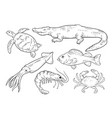 sea animals line set vector image vector image