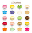 Colorful macaroons flavors vector image vector image