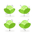 set of funny cartoon cabbages ballerinas vector image