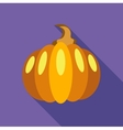 Thanksgiving pumpkin icon flat style vector image vector image