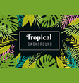 tropical background rainforest palm tree leaves vector image vector image