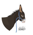 adorable donkey head with black mane in blue vector image vector image