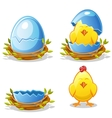 Cartoon chicken and blue egg in a nest vector image