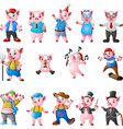 cartoon pigs collection set vector image
