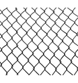 Chainlink fence vector image vector image