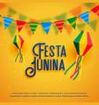 festa junina holiday background design vector image vector image