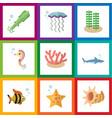 flat icon sea set of medusa algae hippocampus vector image