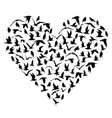i love birds concept vector image vector image