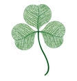 leaf clover isolated Macro vector image vector image