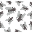 seamless pattern with flies on white background vector image