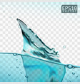transparent water splash with wave and bubbles vector image vector image
