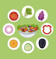 bowl salad vegetables meal diet vector image vector image