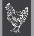 chicken sketch vector image vector image