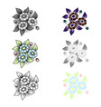 different three daisy patterns vector image vector image