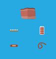 flat icon food set of kielbasa beef bratwurst vector image vector image