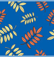 rowan leaves autumn seamless pattern color vector image