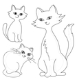 cats contours vector image
