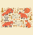 collection cute animals foxes and hares vector image