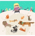 Girl dog-walker taking pack of dogs for a walk vector image