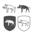 heraldic shields with boar vector image vector image