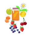 honey and fruits and berries vector image vector image