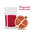 pomegranate juice red fruit vector image
