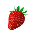 ripe juicy strawberry isolated on white vector image vector image