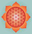 Sacred Geometry flower of life orange mandala vector image vector image