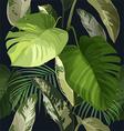 Tropical leaf pattern vector image vector image