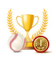 baseball achievement award sport banner vector image