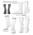 Basketball socks vector image