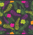 black and colourful tropical plants vector image vector image