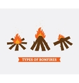 Bonfire vector image