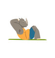 rhinoceros doing press exercise funny sportive vector image vector image