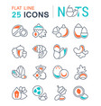 set flat line icons nuts vector image