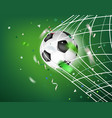 the ball in soccer net goal concept vector image vector image