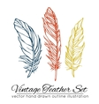 Vintage feather set isolated on white background vector image