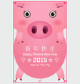 year of the pig vector image vector image