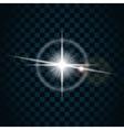 sparkle light star 5 vector image