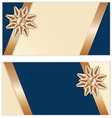 Festive Golden Bow Blue Banners vector image