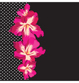 Floral pattern with beautiful flowers hand-drawing vector image